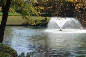 plano_Water_feature_small